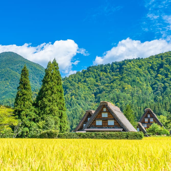 The Historic Villages of Shirakawa-go & Gokayama (UNESCO)