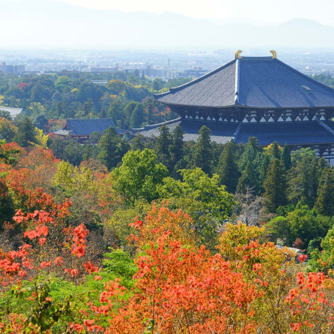 The Historic Monuments of Ancient Nara (UNESCO)