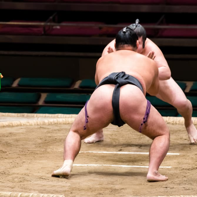 Japanese Sports—An Overview
