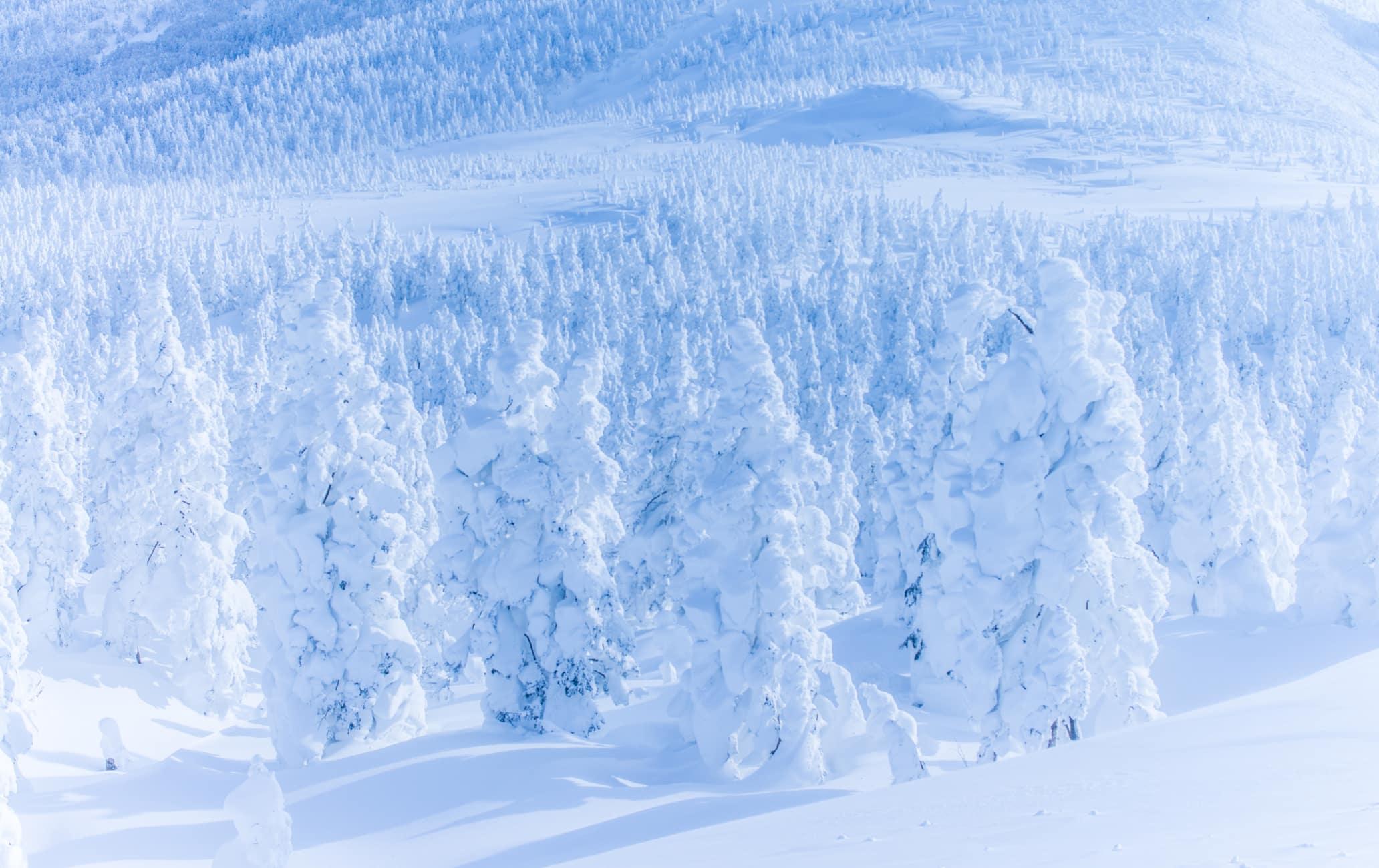 Снежные монстры Дзао
